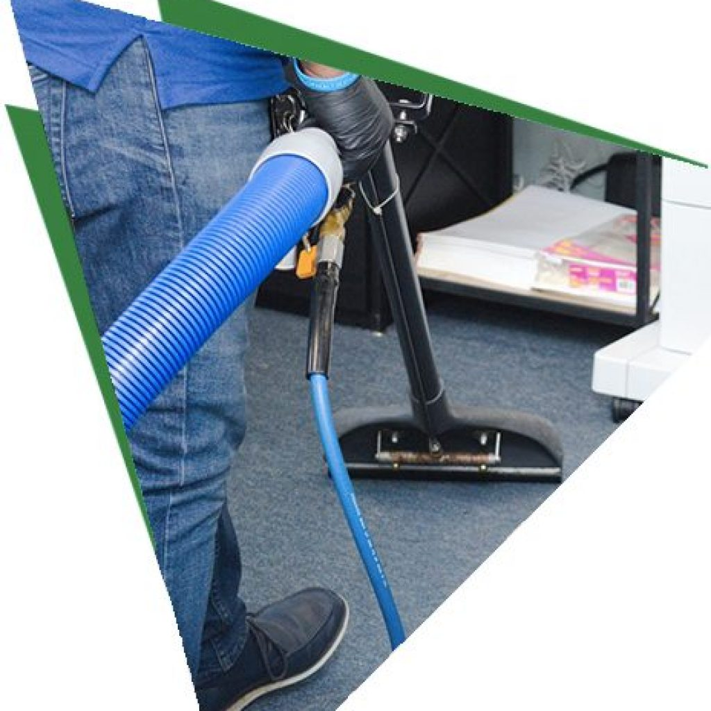 domestic carpet cleaning new york